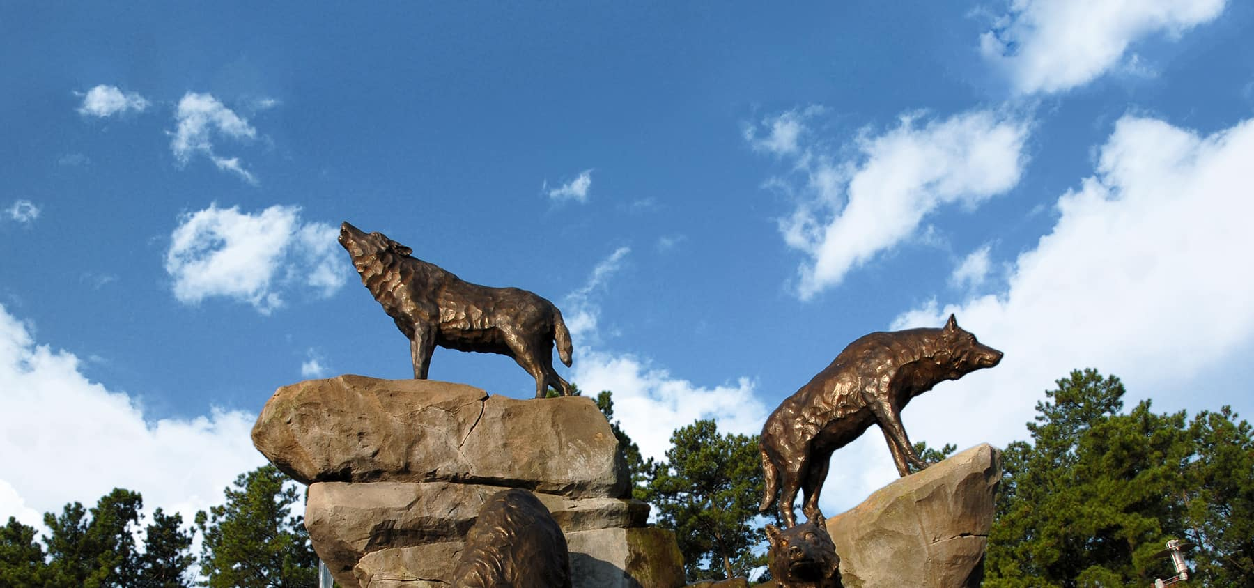 Wolf statues with blue sky in the background