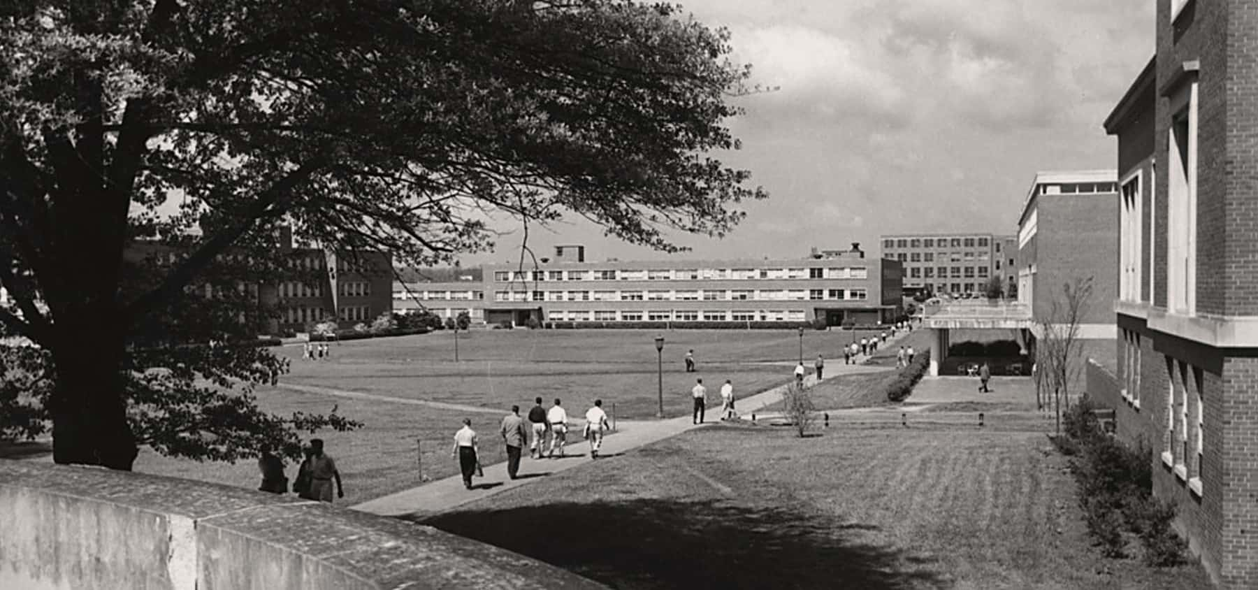 The brickyard area of campus before it was bricks